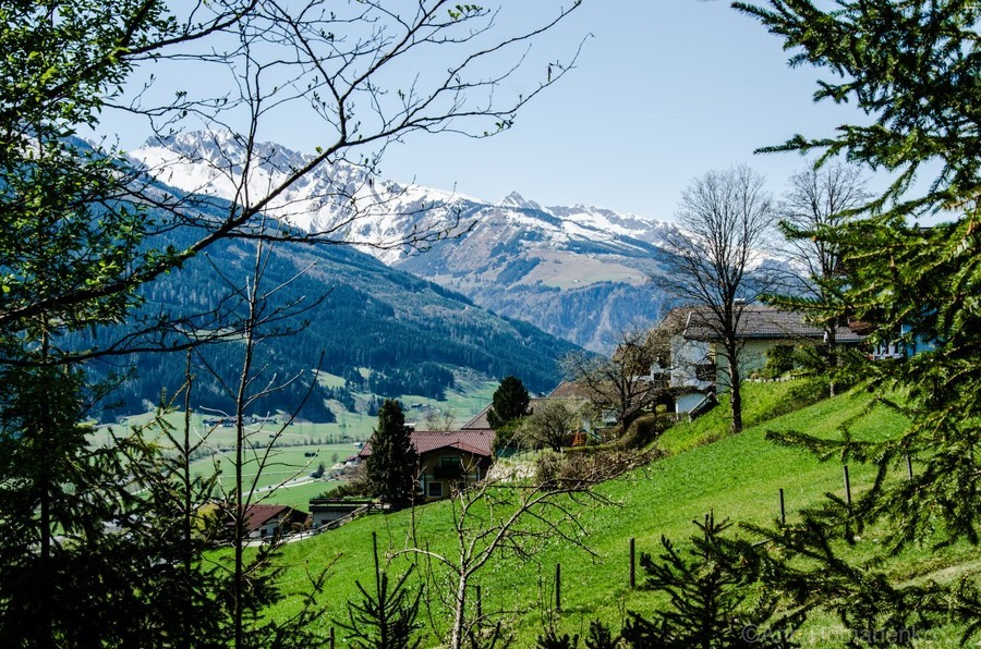 In The Alps  Print