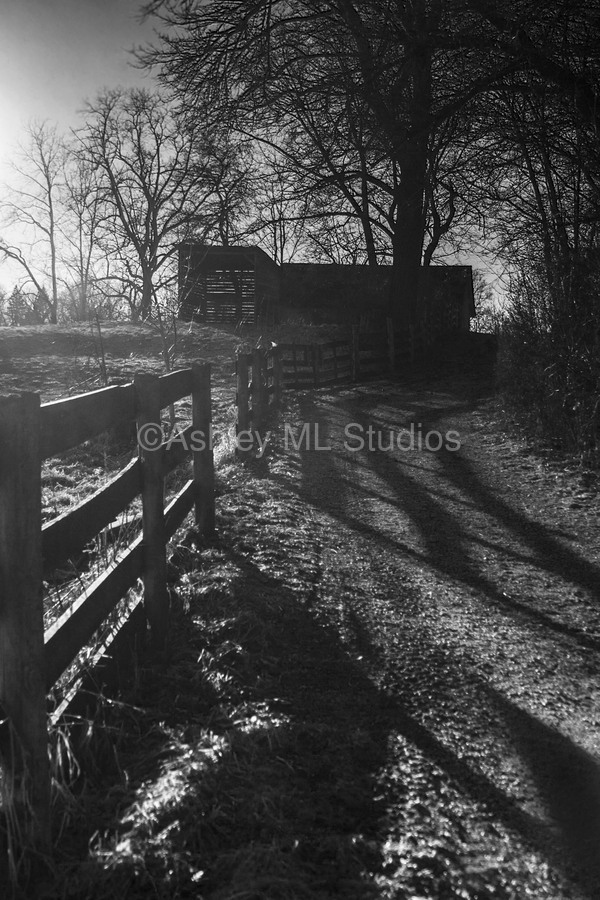 Barn at Sunset  Print