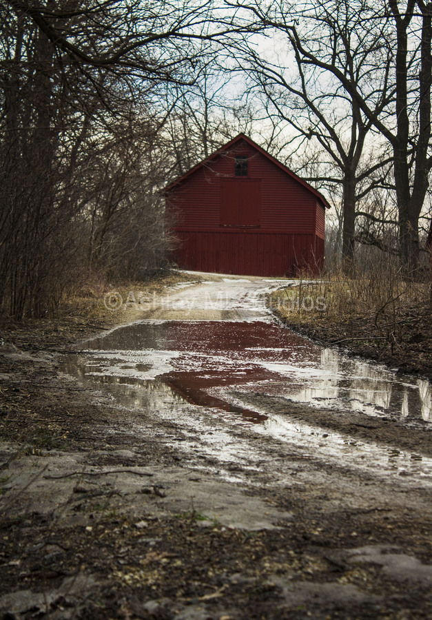 Travel to the Red Barn  Print