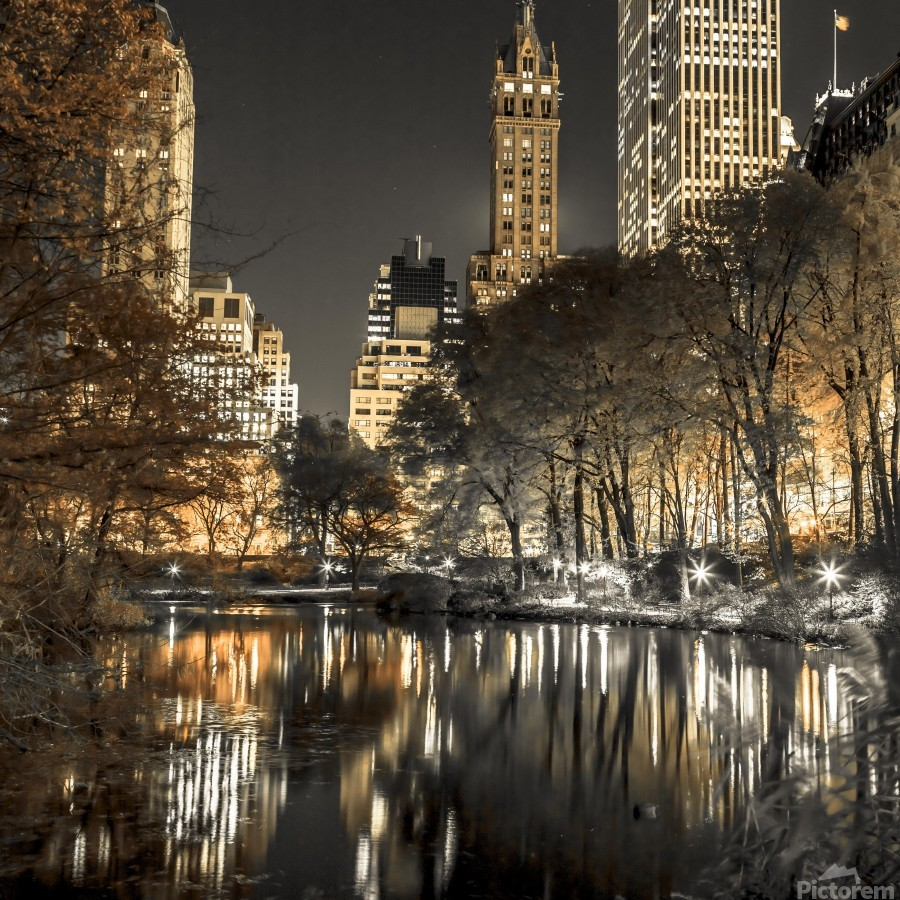 Evening view of Central Park in New York City  Print