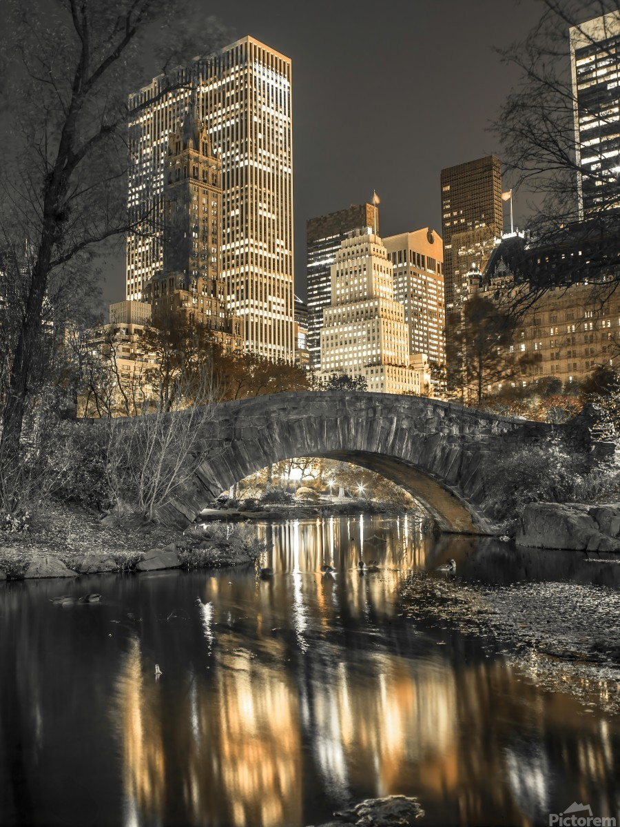 Evening view of Central Park in New York City  Imprimer