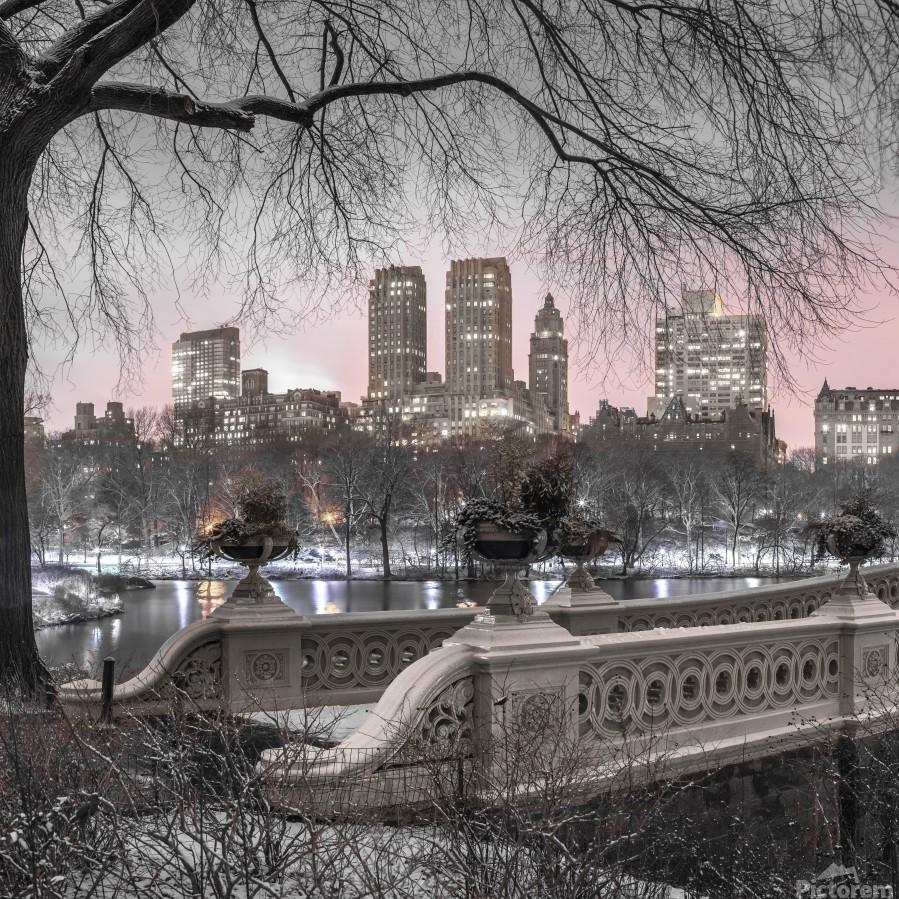 Central park with Manhattan skyline, New York  Print