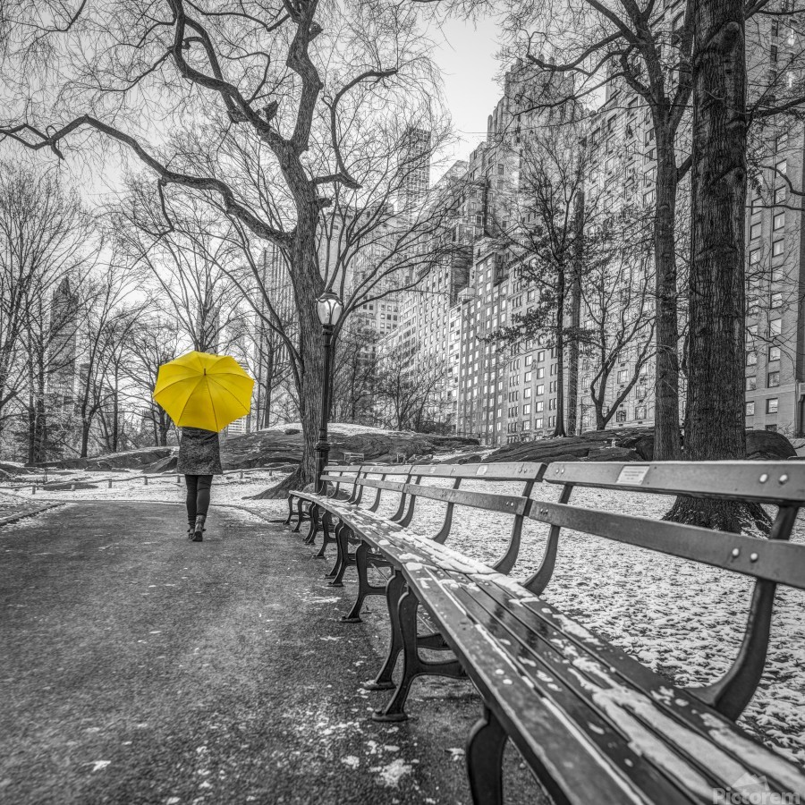 Tourist on pathway with Yellow umbrella at Central park, New York  Print