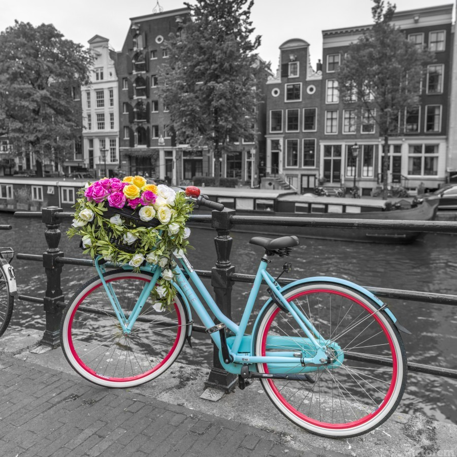 Bicycle with bunch of roses on bridge, Amsterdam  Print