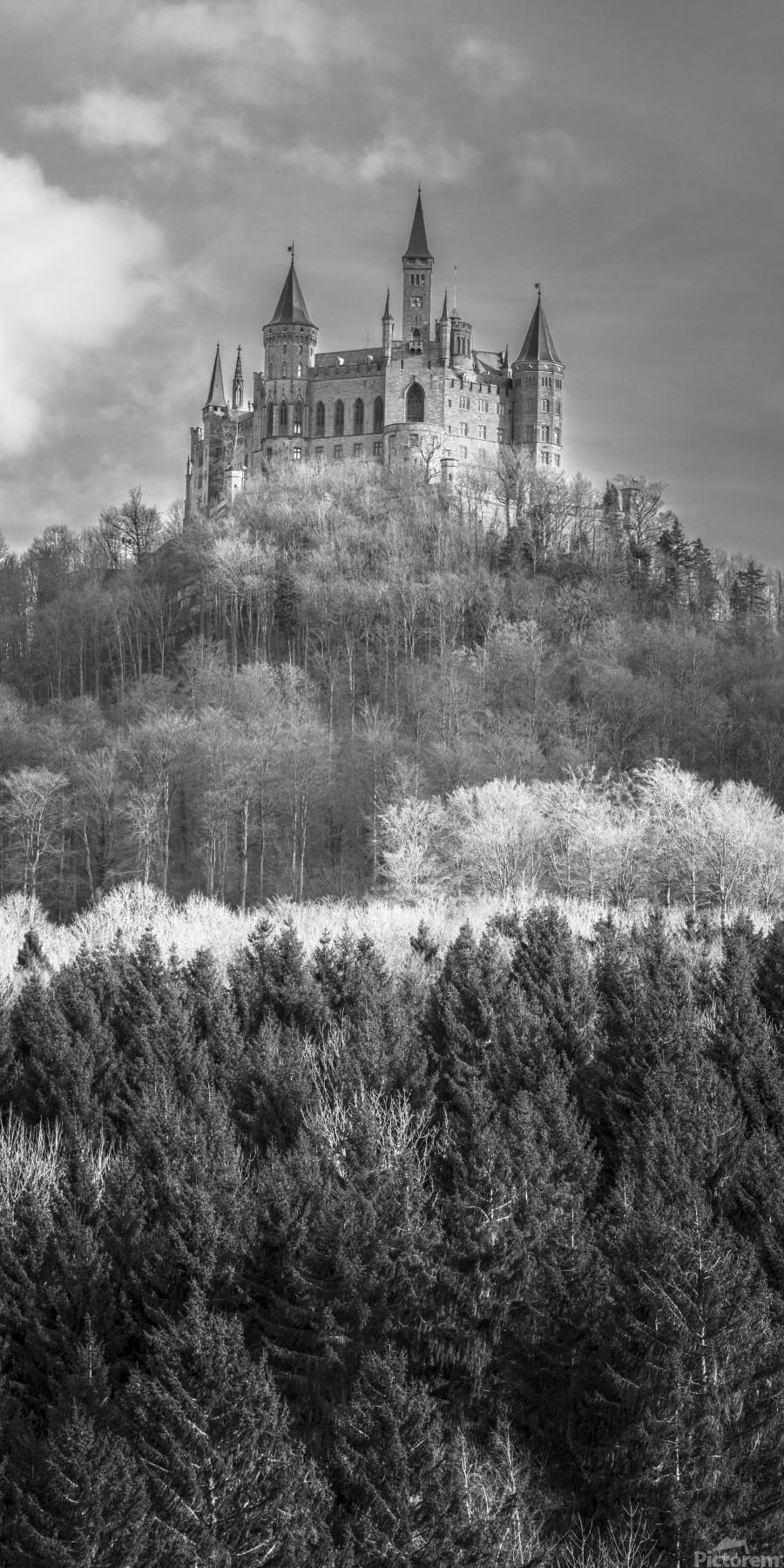 Hohenzollern Castle, Germany  Print