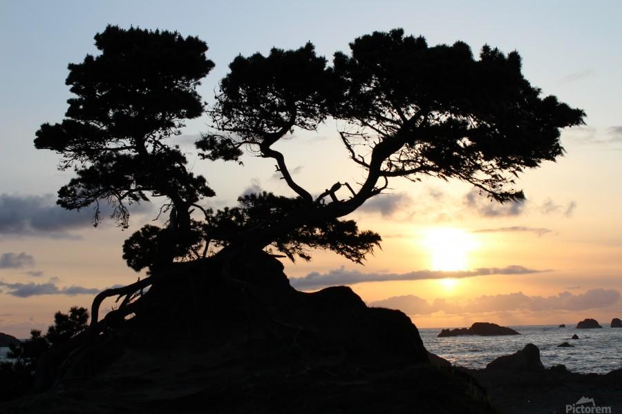 Coastal Sunset  Print