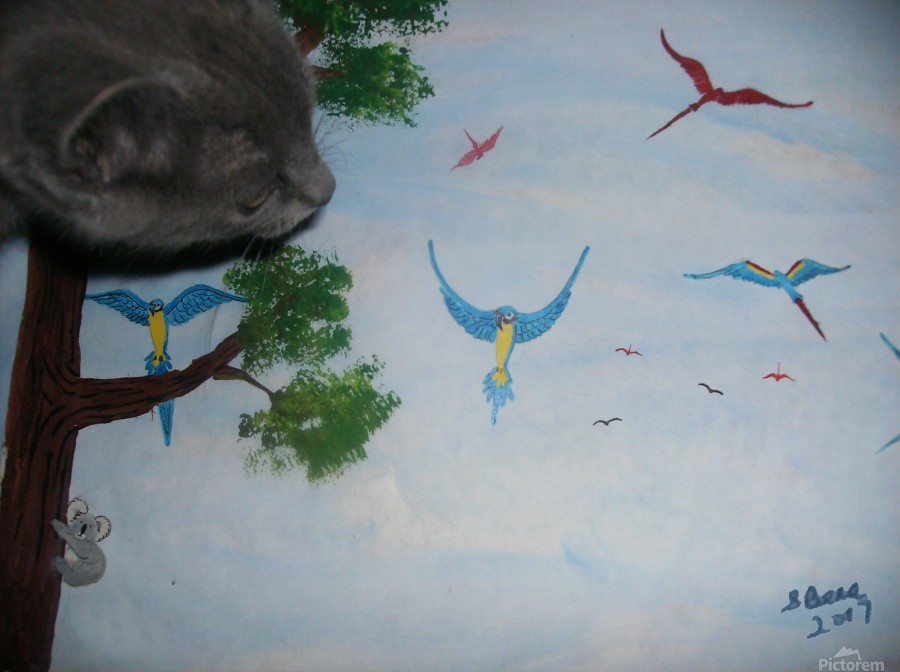 Real Kitty Hunting The Macaws  Print