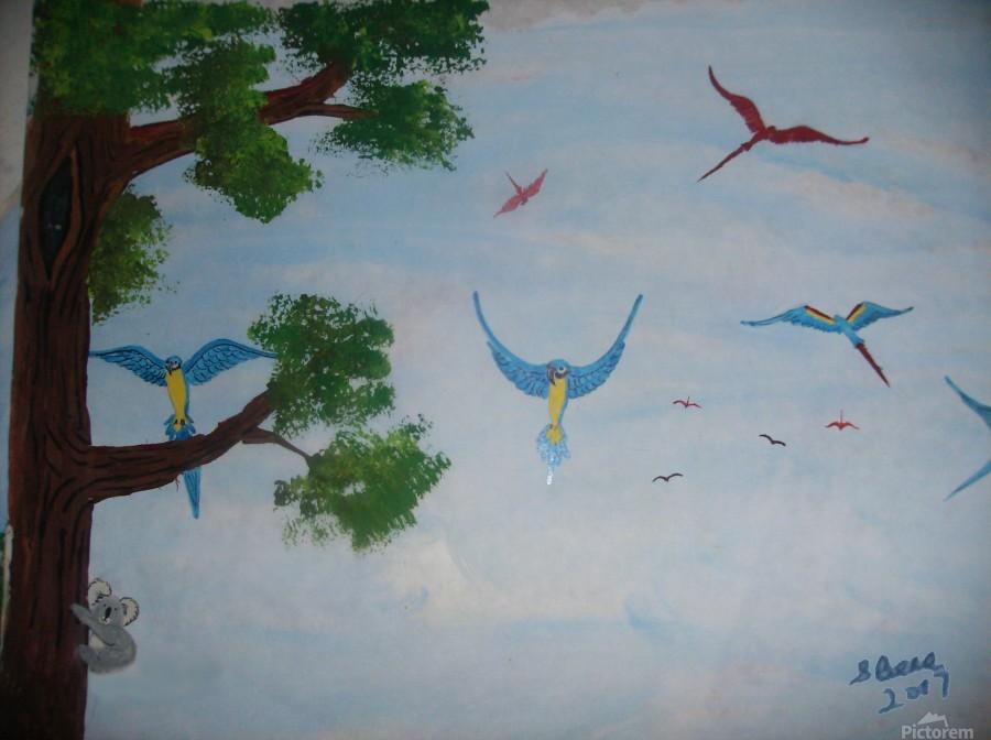 Macaw family  Print