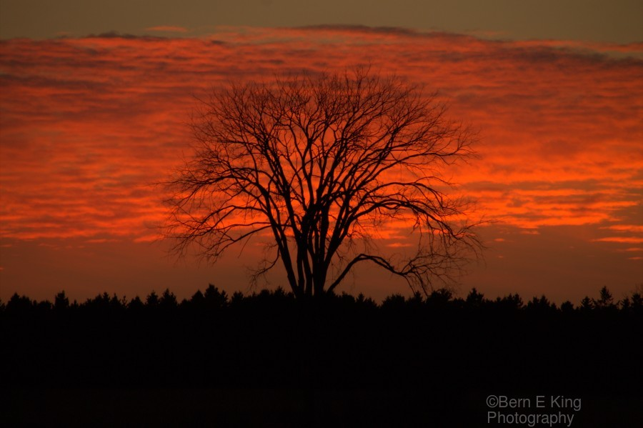 Wisconsin November Sunset Wood County  Print