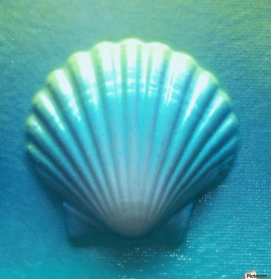 Blue Shell  Print