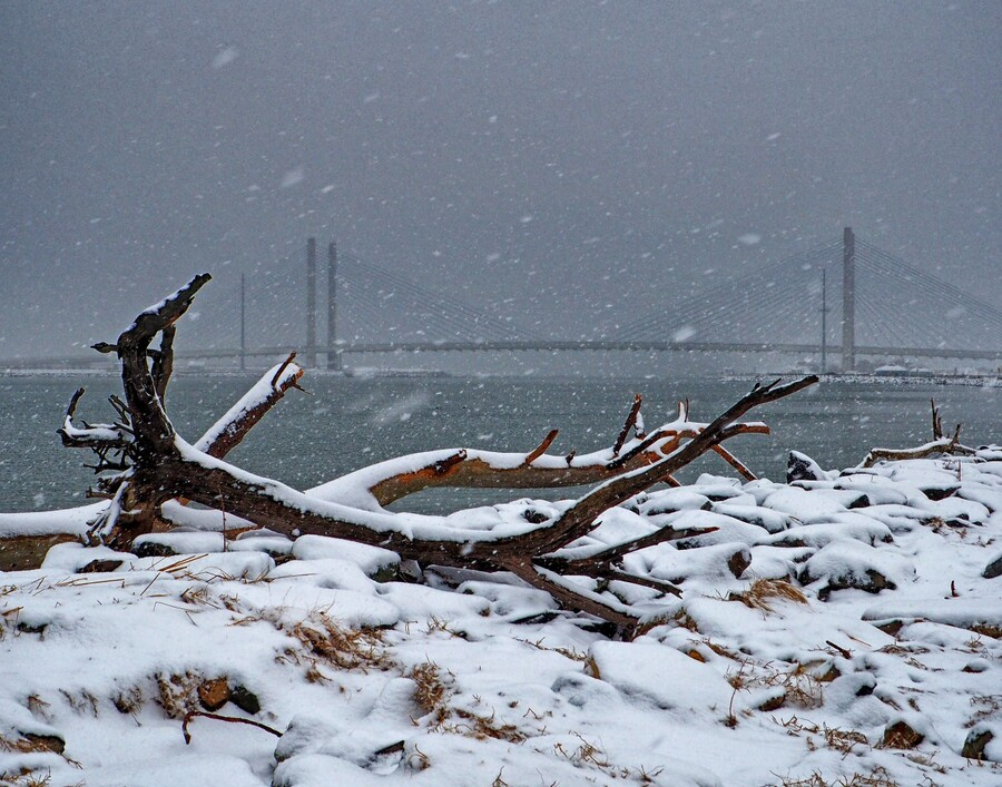 Indian River Bridge with Driftwood and Snow  Print