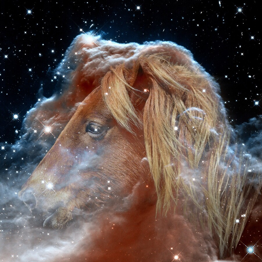 Horsehead Nebula with Horse Head in Space  Print