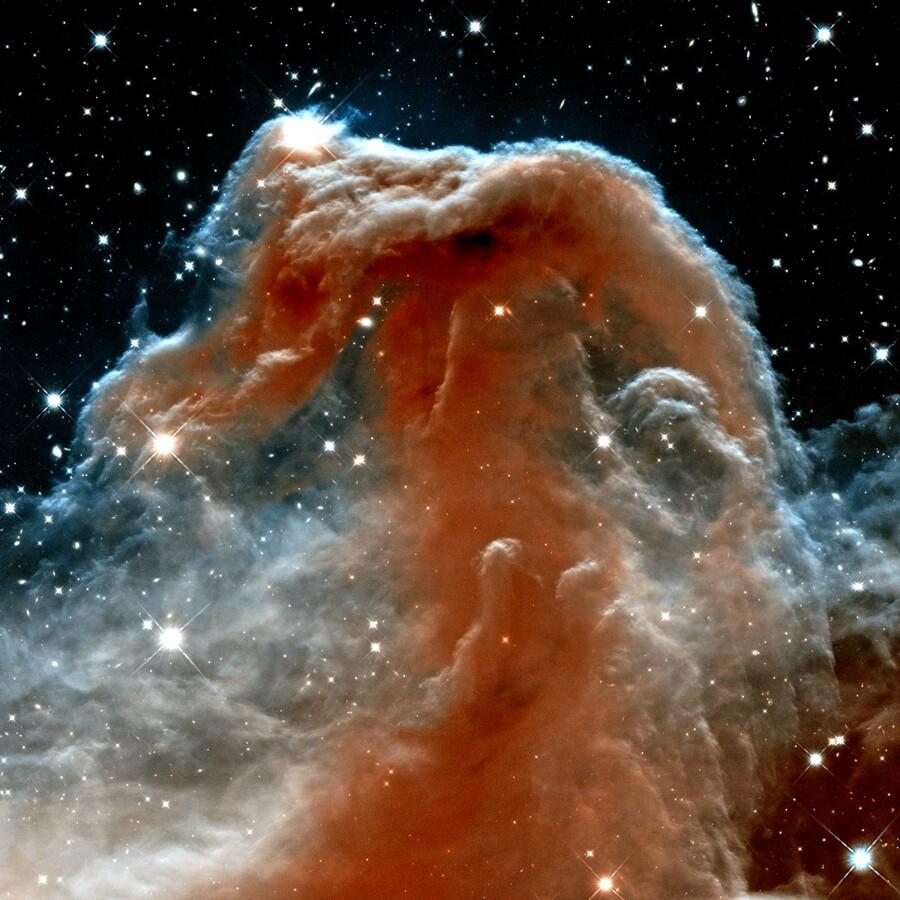 Horsehead Nebula In Space  Print