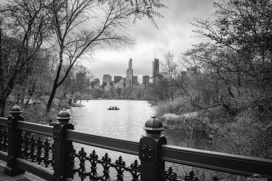 Central Park  Print