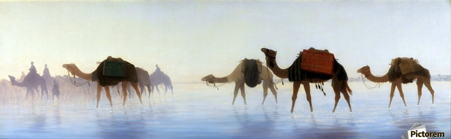 Camels crossing water  Print