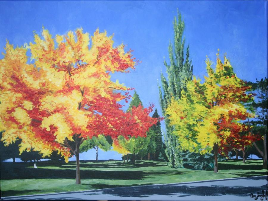 College Trees  Print