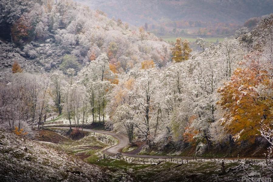 Autumn snow on Back Hollow Road Tucker County West Virginia  Print