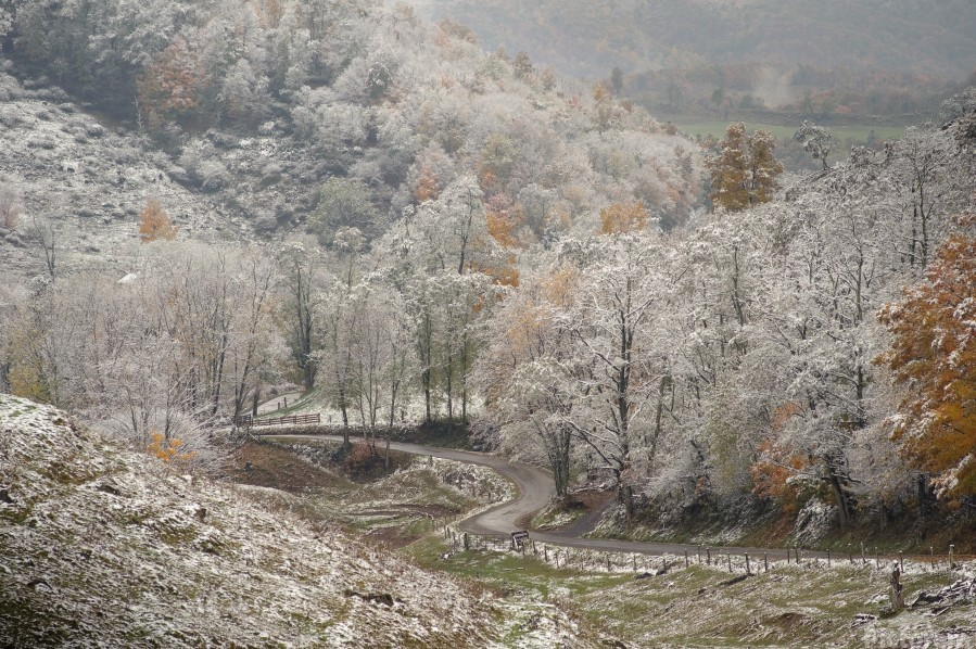 Back Hollow Road Tucker County WV autumn snow  Print