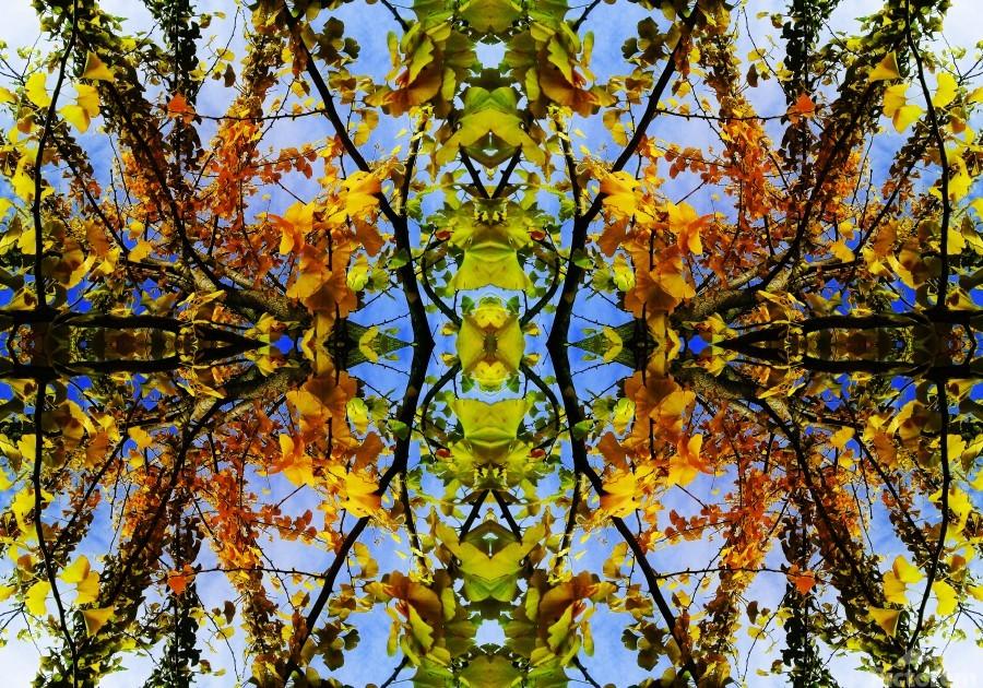 flower43  Print