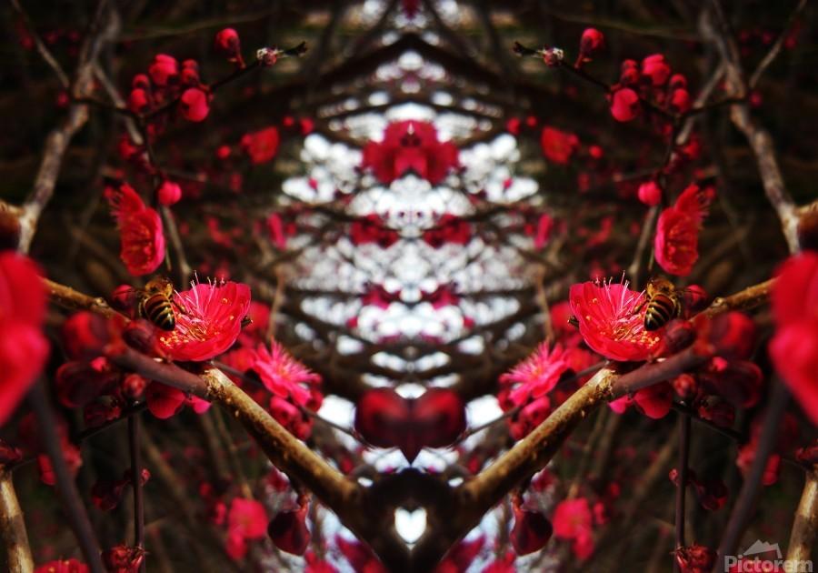flower83  Print