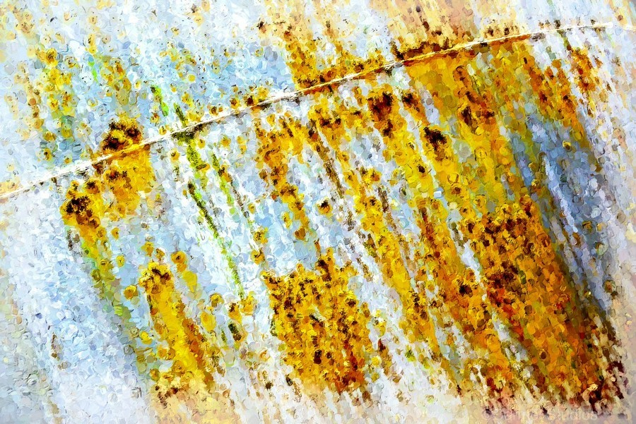 Rusty Barrel  Print