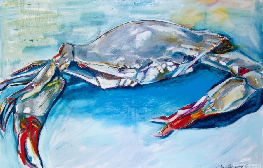 Louisiana She Soft Shell Crab  Print