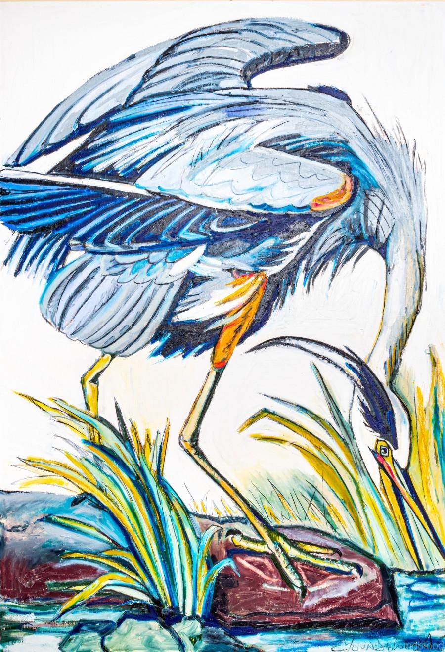 Louisiana Blue Heron Catching Fish- Bright  Print