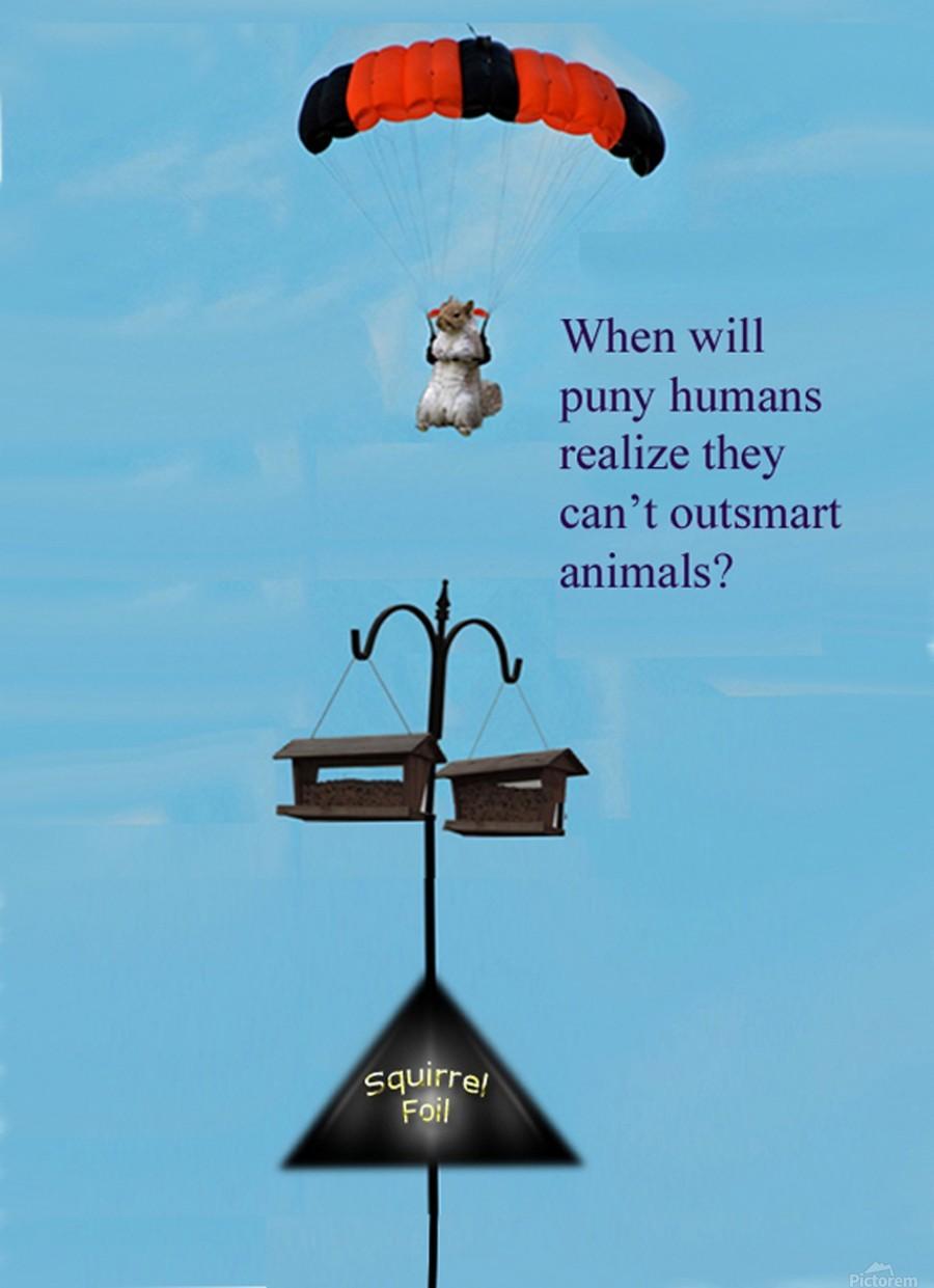 SkyDivingSquirrel  Print