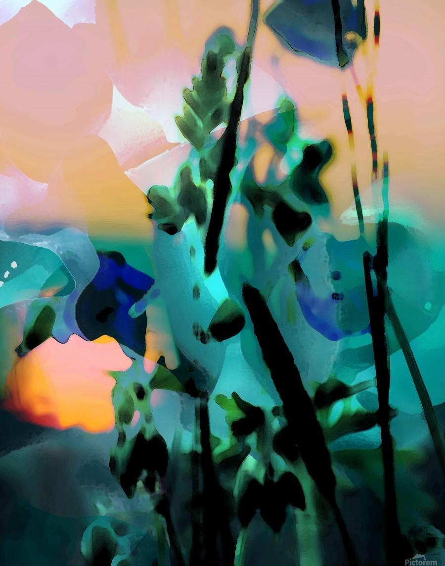 Natures Grace  Imprimer
