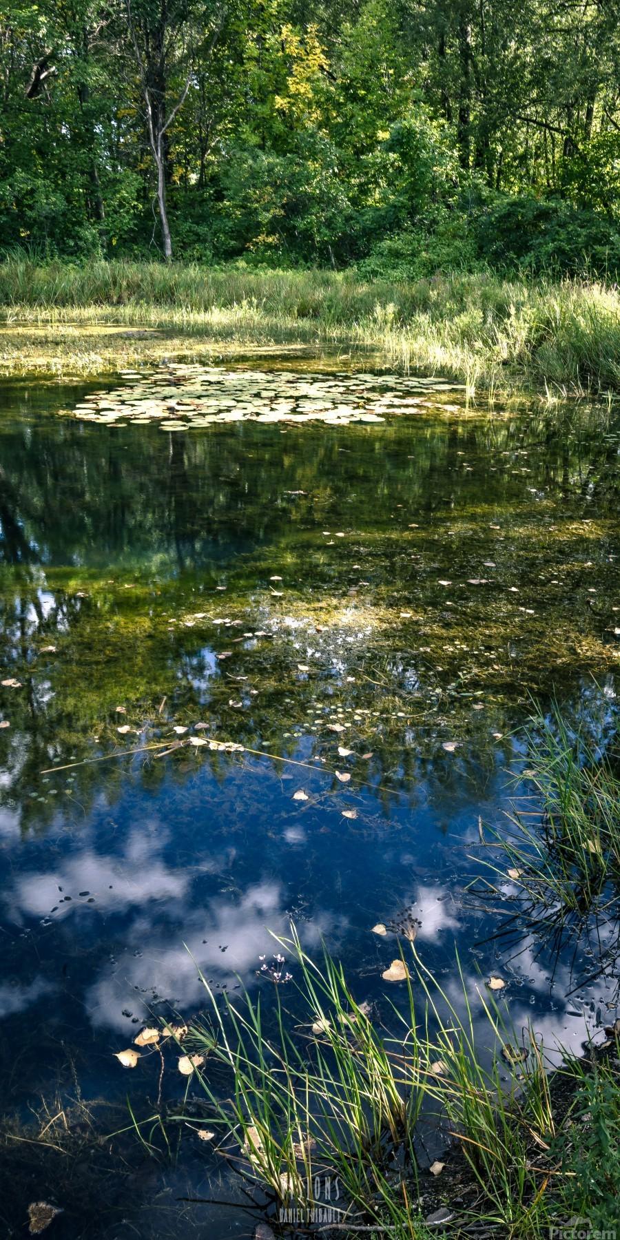 Monet style 2  Print