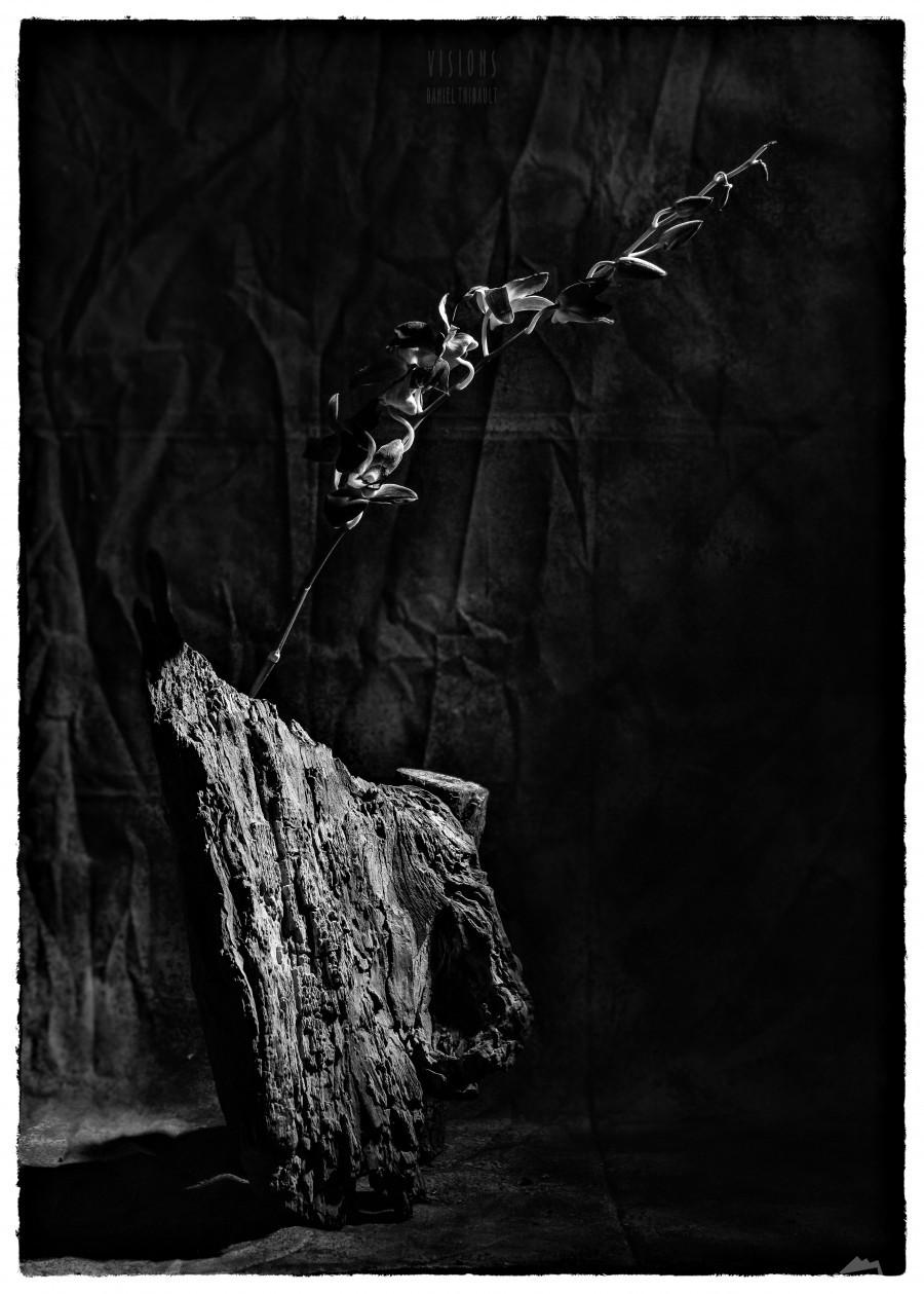 Black and white blues  Print