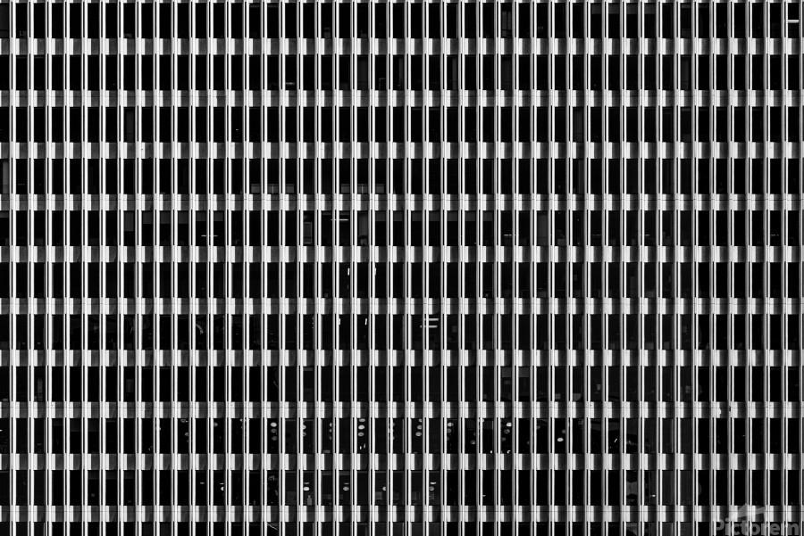 Black and White Skyscraper Windows  Print