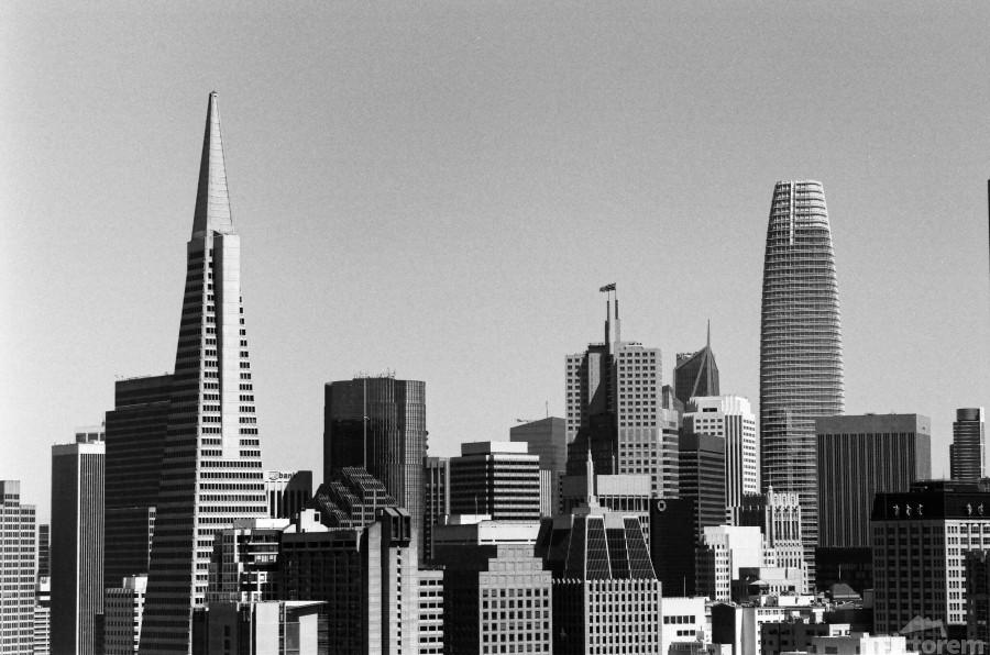 Black and White San Francisco Skyline  Print