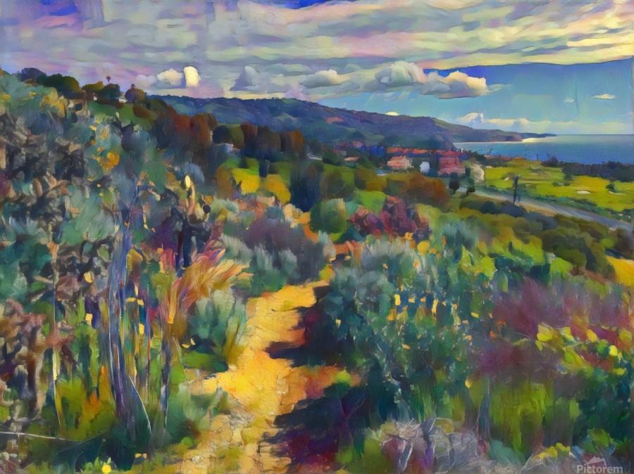 California spring hike  Print