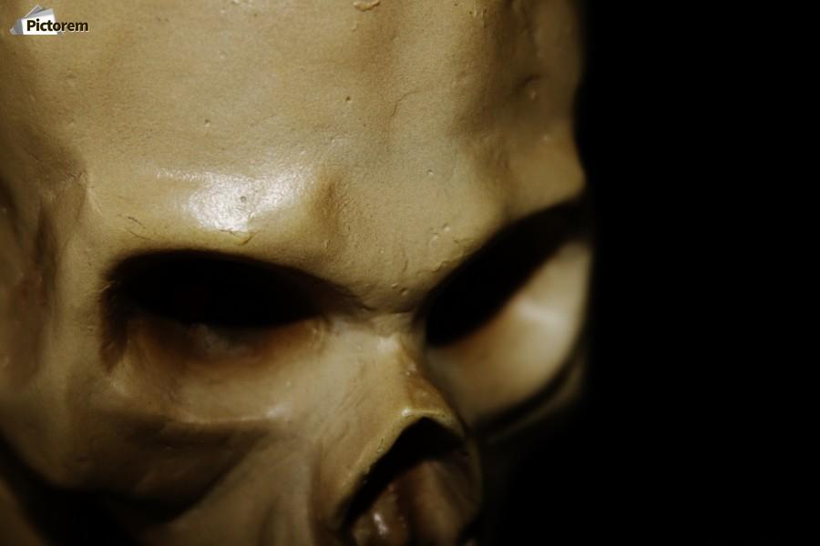 Skeleton Head  Print