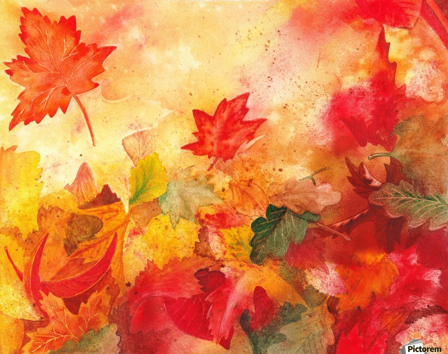 Autumn leaves Serenade   Print