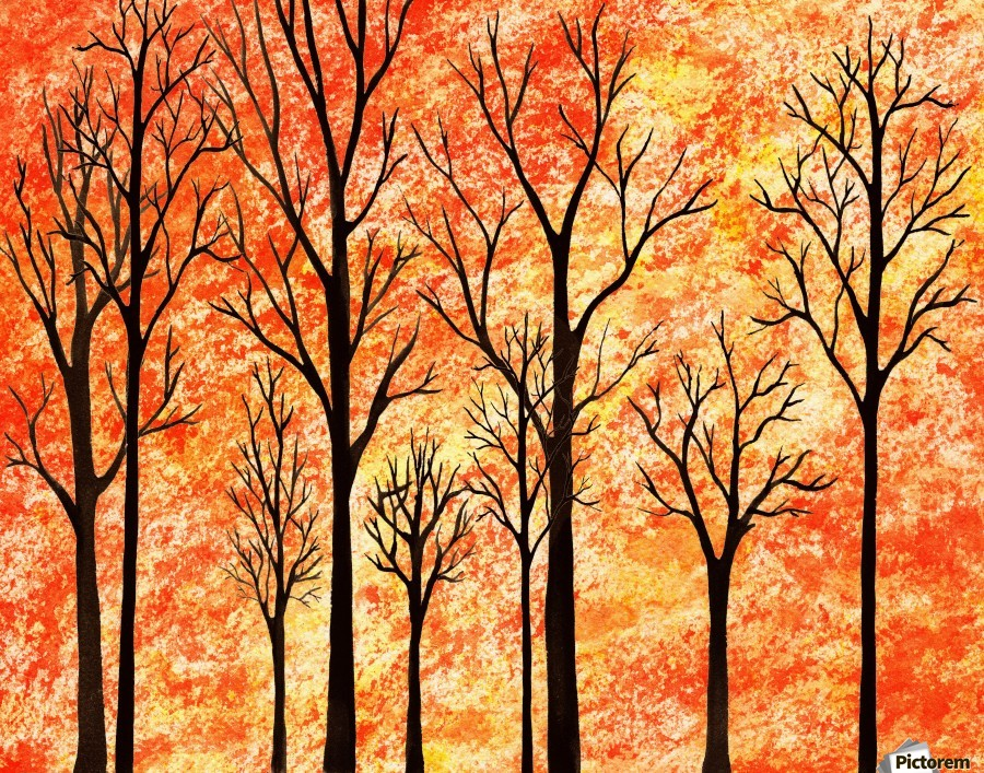 Autumn Forest Abstract   Print
