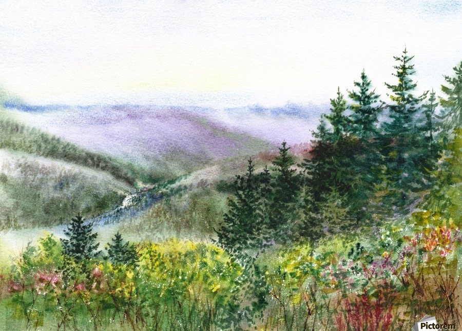 Landscape With Redwood Creek   Print