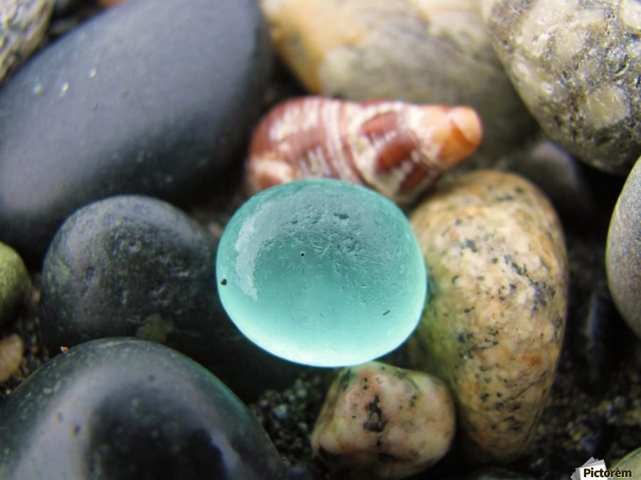 Sea Glass and Seashell  Print