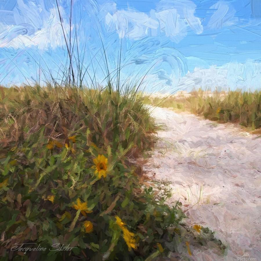 A Trail to the Beach  Print