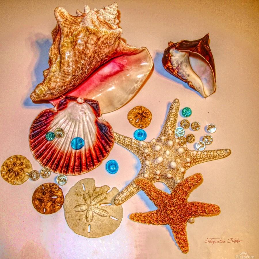 Sea Treasures  Print