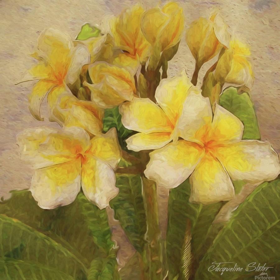 Floridian Bouquet  Print