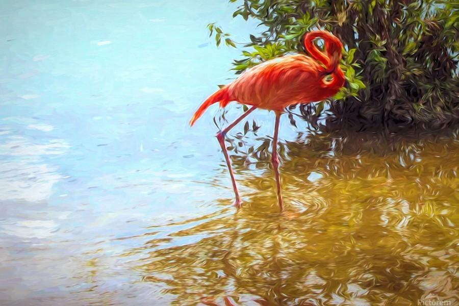 Pink Flamingo Wading In Water  Print