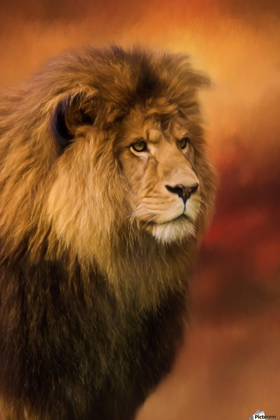 Lion Legacy - Lion Art by Jordan Blackstone  Print