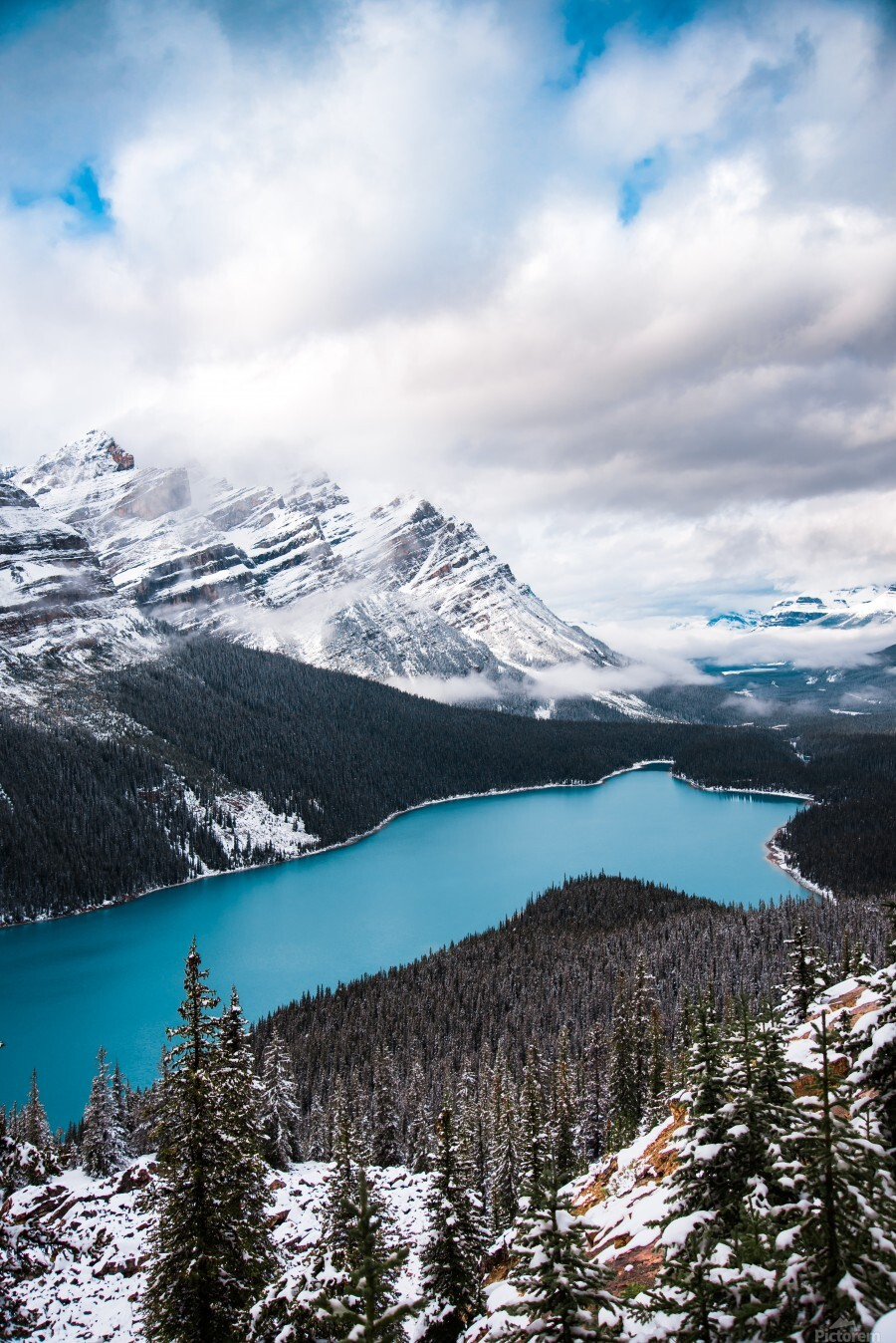 Wintry Peyto Lake  Print