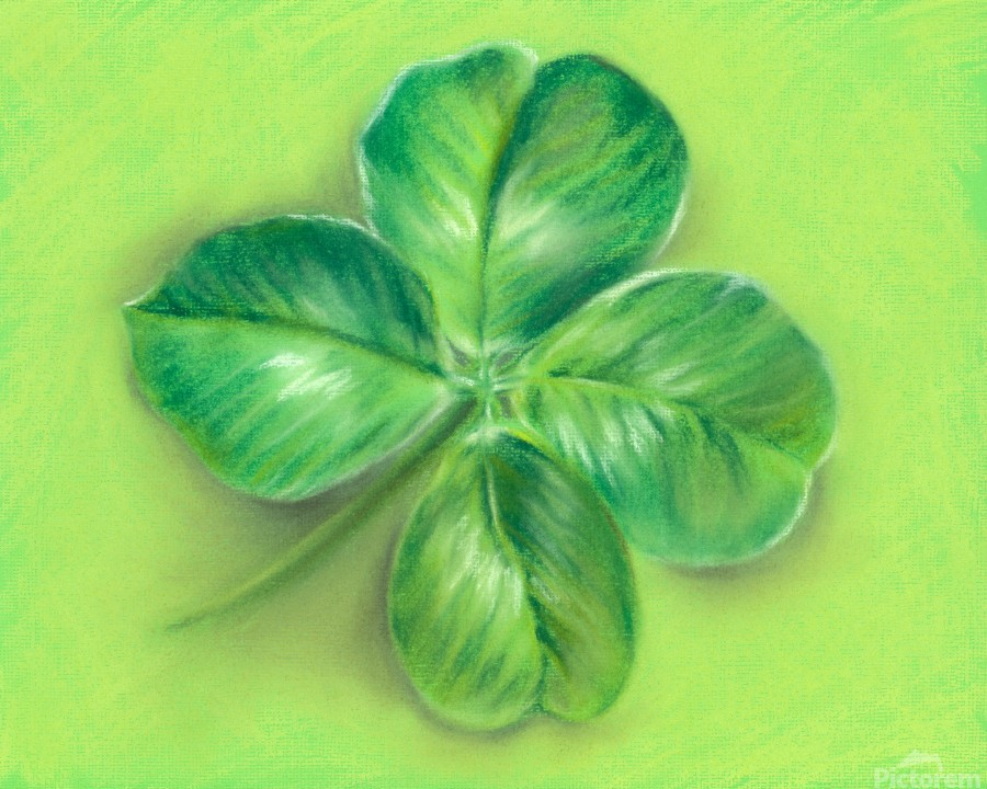 Lucky Four Leaf Clover  Print