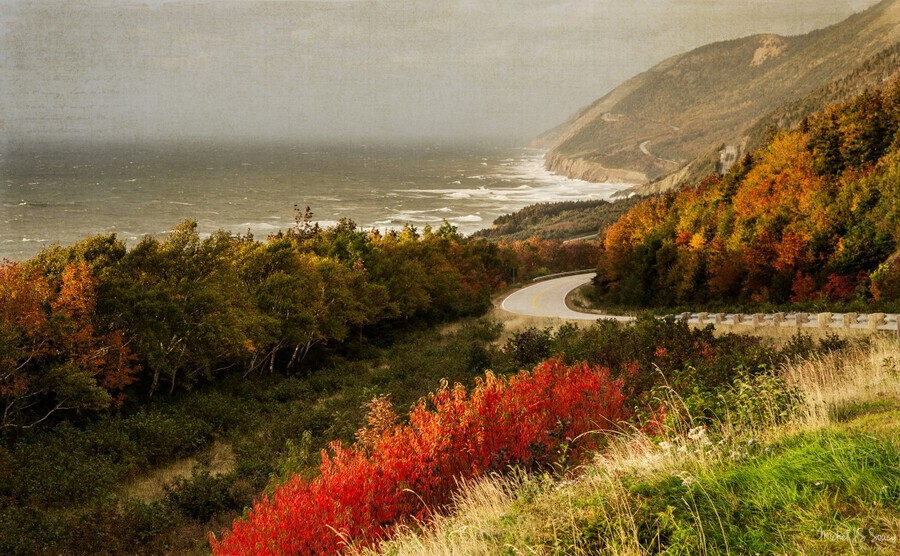 Autumn on the Cabot Trail  Print