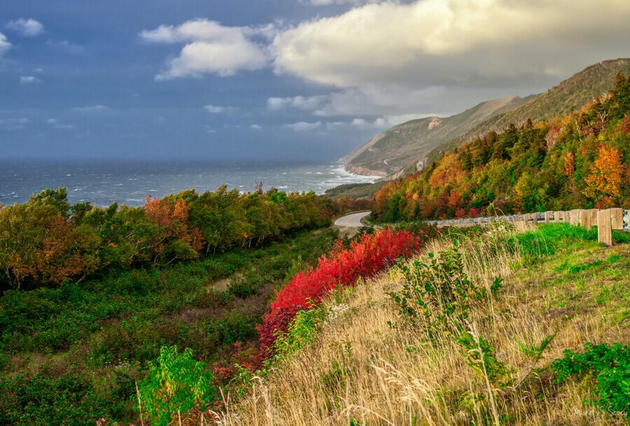 Cabot Trail Colors  Print