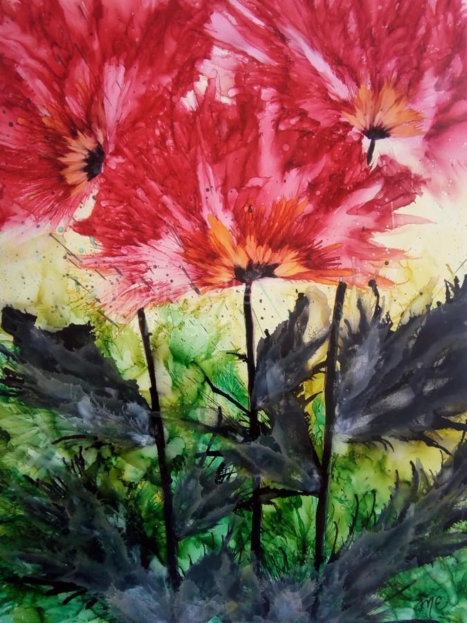 Poppies Galore  Print