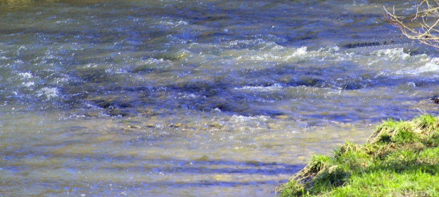 Calming waters  Print